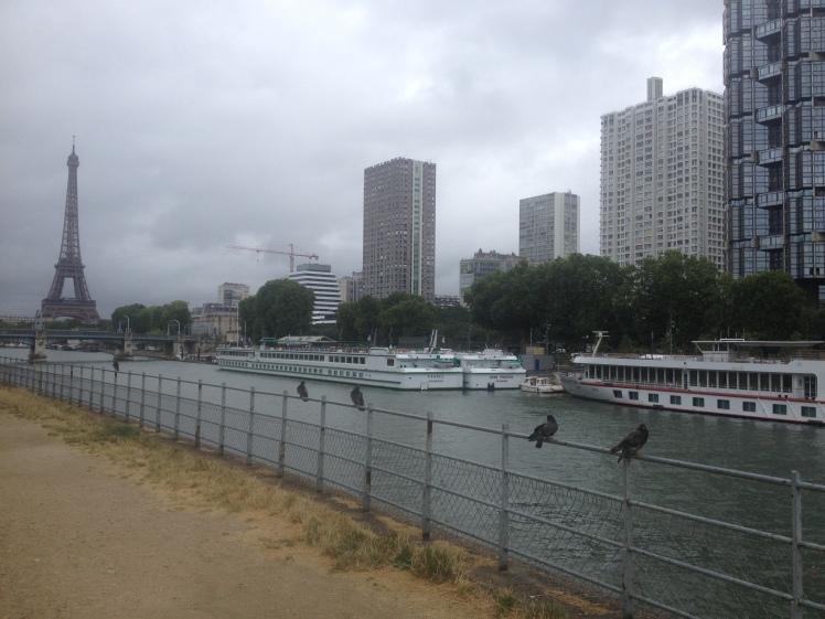 brochette-de-pigeons-parisiens