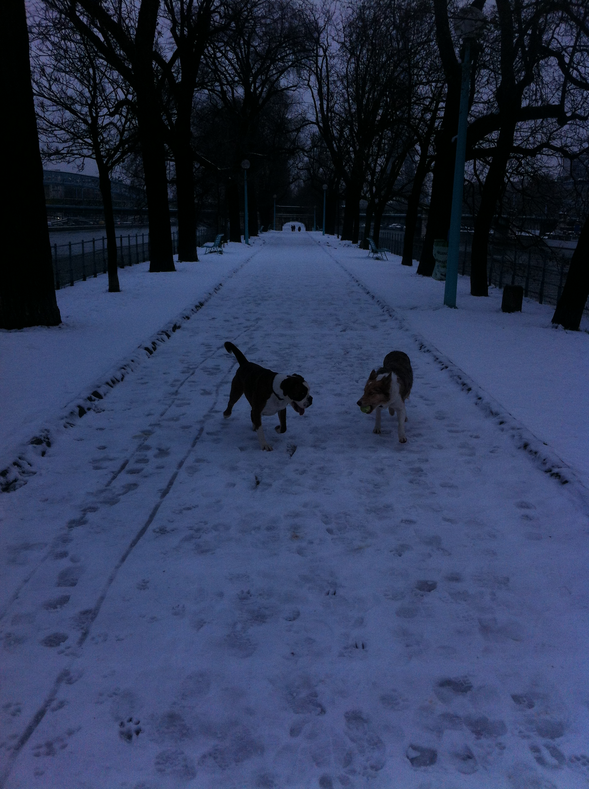 guigui et ghana neige