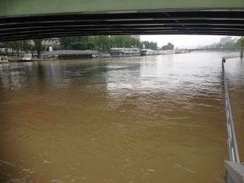 ile aux cygnes sous l'eau CO2