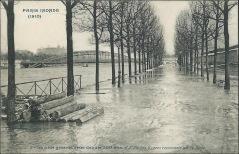 L'Ile des Cygnes recouverte par la Seine (2a 5)